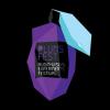 Plums Fest